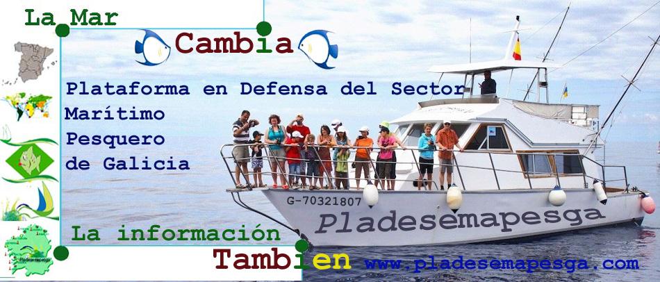 Día Mundial de los Océanos (8 de junio)